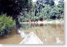 アマゾン河上流へ