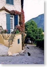 Digneの民家と黒猫