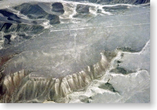 ナスカの地上絵「ハチドリ」
