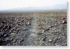 間近で見たナスカの地上絵の線
